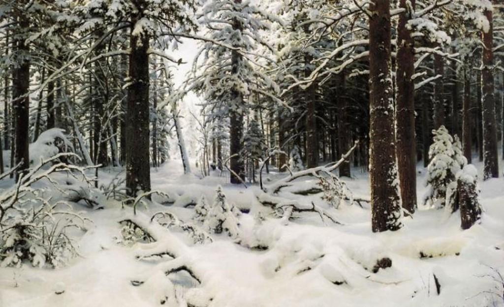 В Мордовии двое школьников заблудились в зимнем лесу